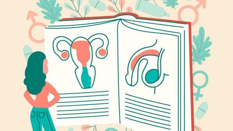 libros-educacion-sexual